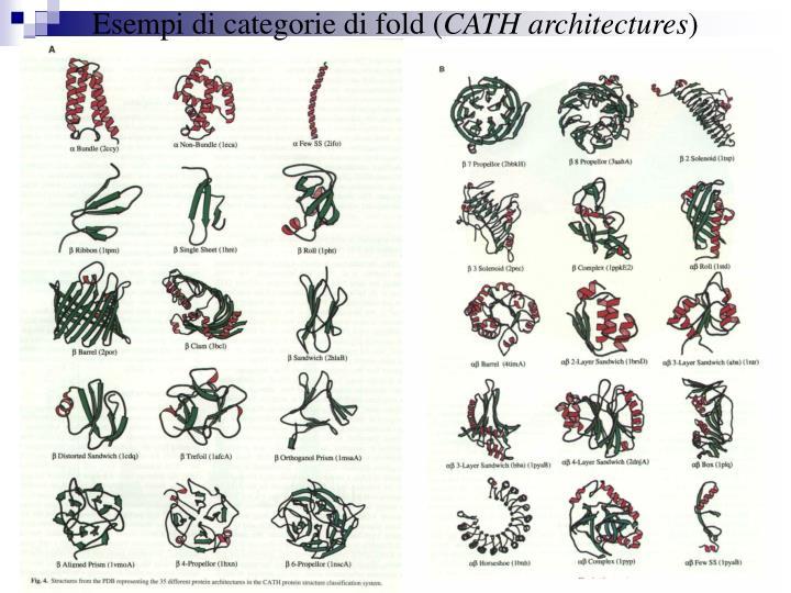 Esempi di categorie di fold (