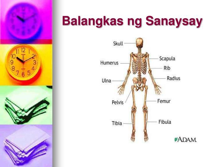 Balangkas ng Sanaysay