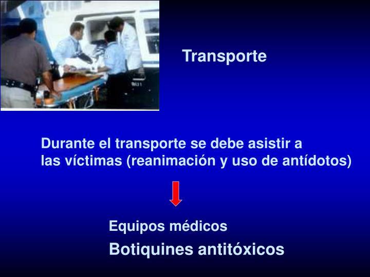 Transporte