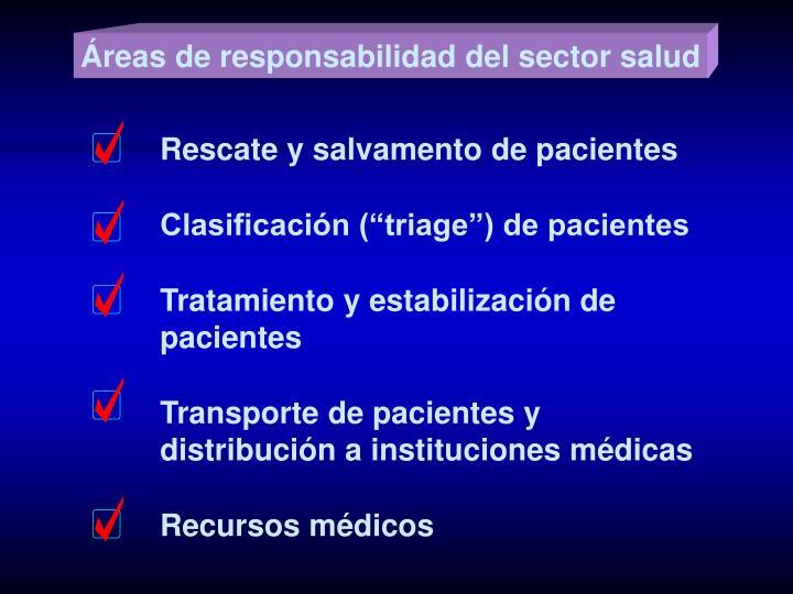 Áreas de responsabilidad del sector salud