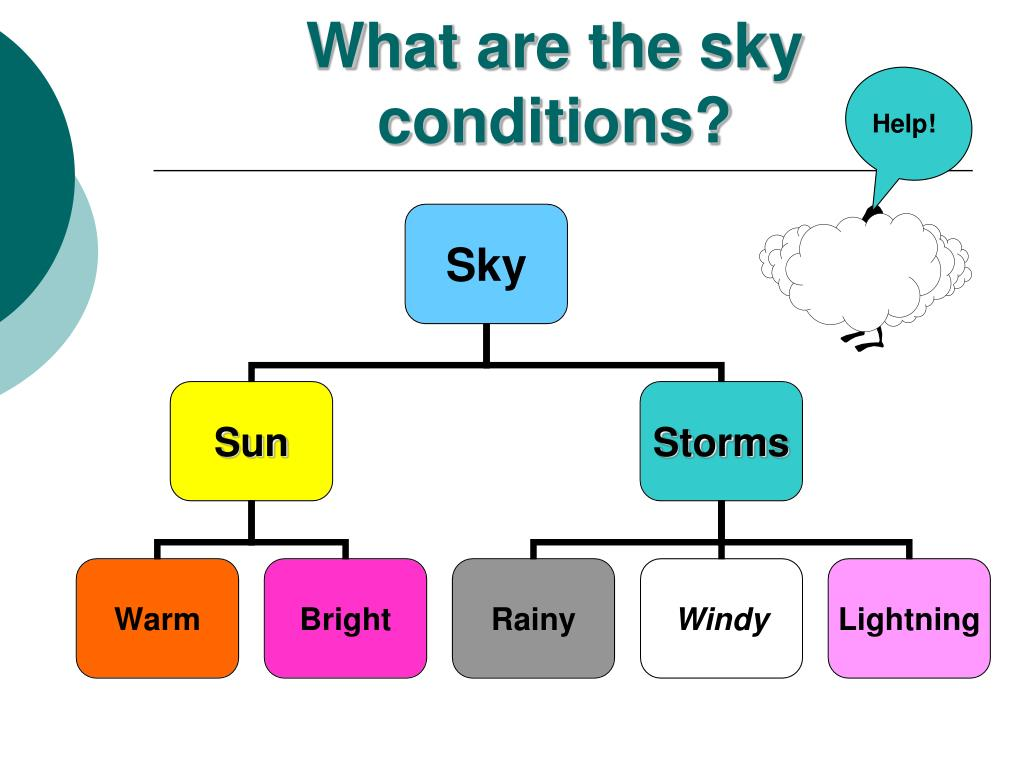 What are the sky conditions?