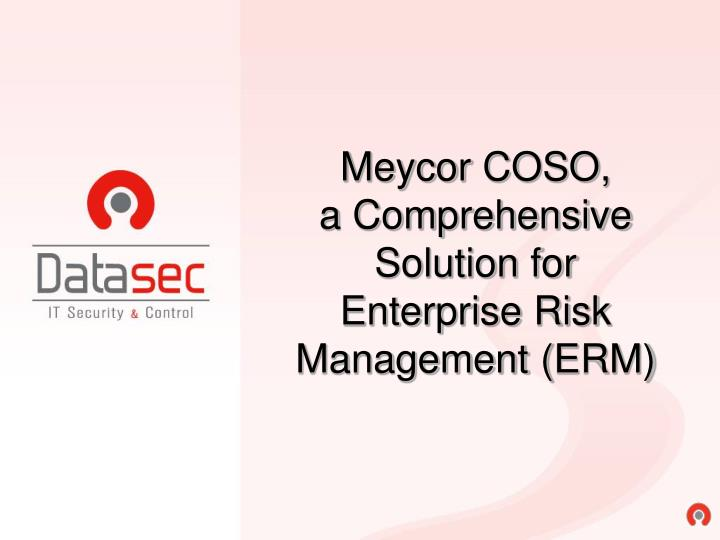 Meycor coso a comprehensive solution for enterprise risk management erm