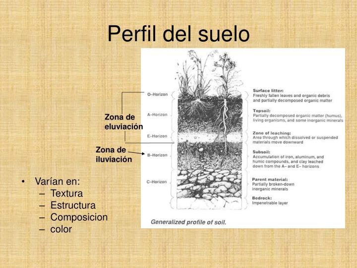Ppt meteorizaci n erosi n y suelos powerpoint for Perfil del suelo wikipedia