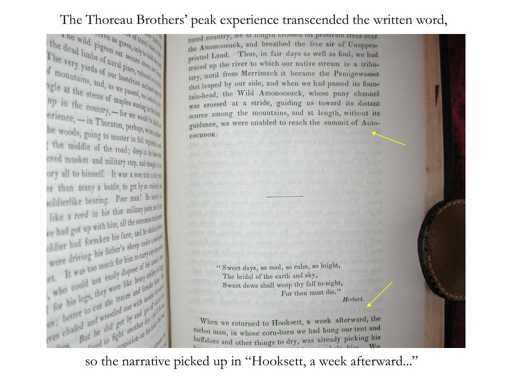 The Thoreau Brothers' peak experience transcended the written word,