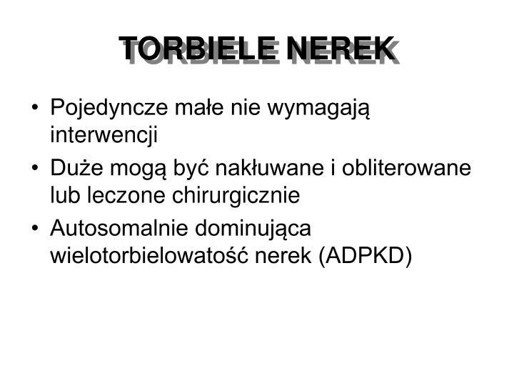 TORBIELE NEREK