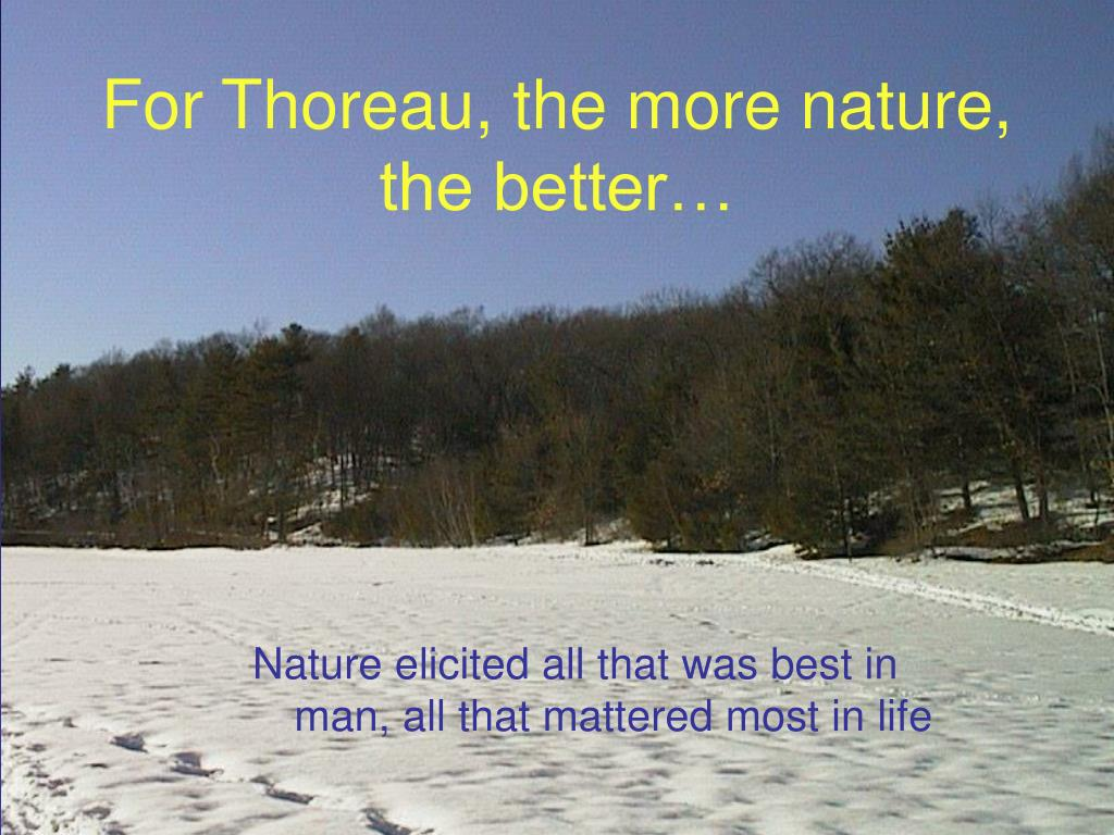 For Thoreau, the more nature, the better…
