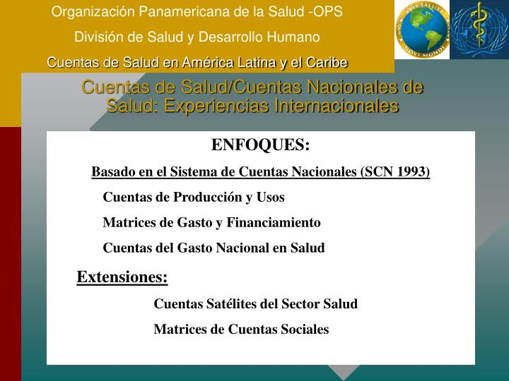 Organización Panamericana de la Salud -OPS