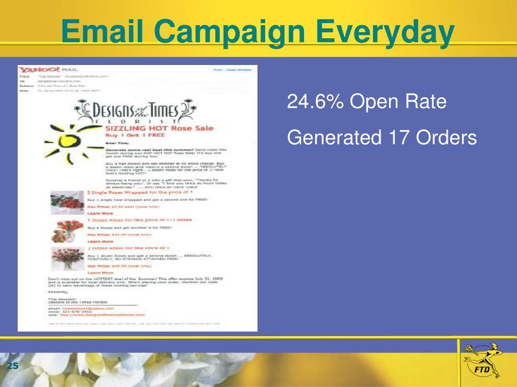 Email Campaign Everyday