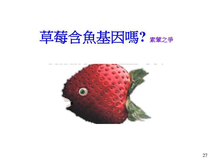 草莓含魚基因嗎