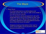 the maze44