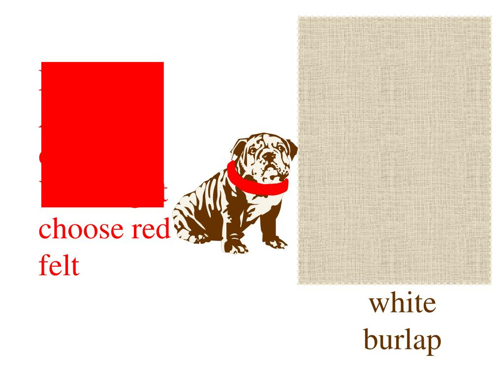 For one of Albert's colors you might pick white burlap