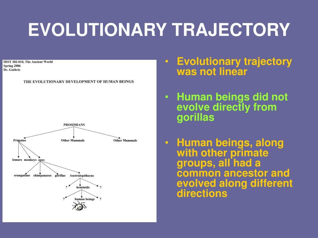 EVOLUTIONARY TRAJECTORY