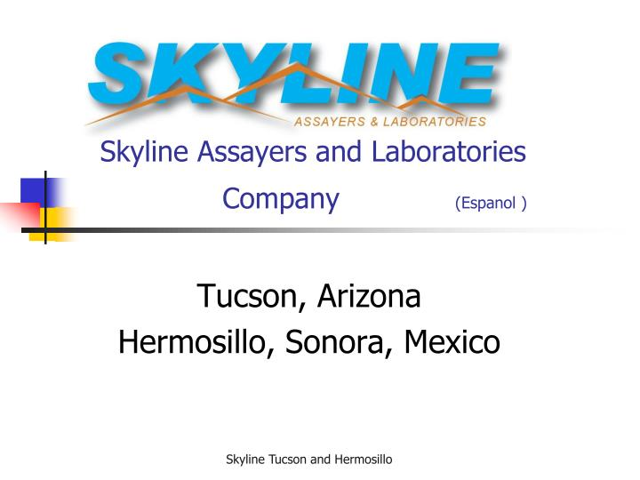 Skyline assayers and laboratories company espanol