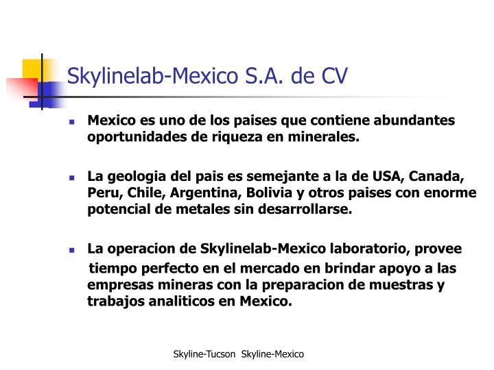 Skylinelab-Mexico S.A. de CV