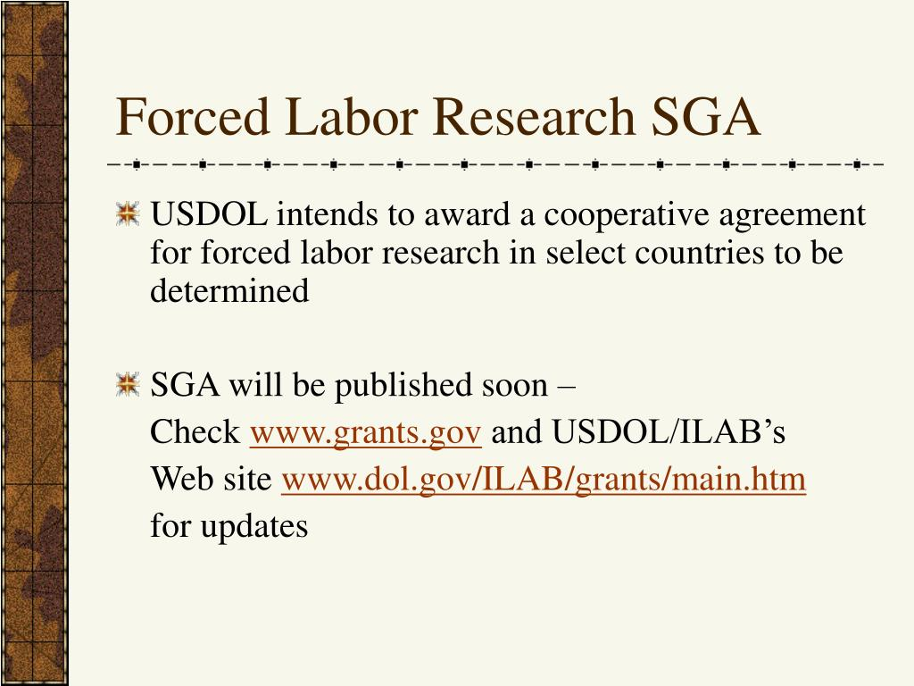 Forced Labor Research SGA
