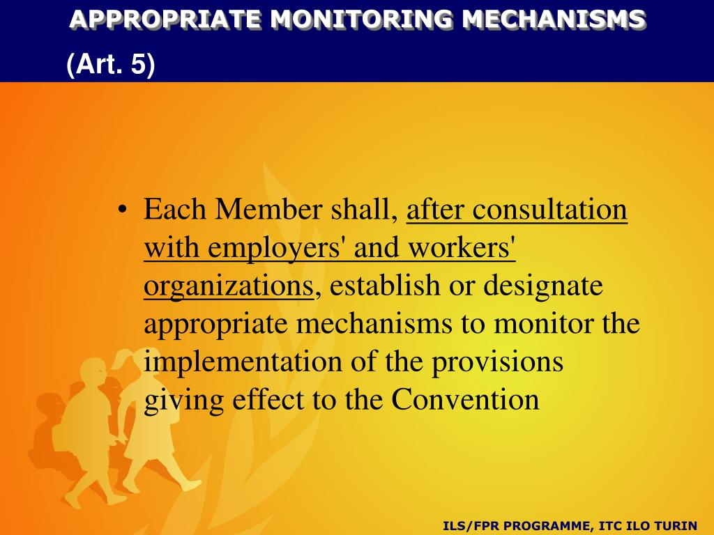 APPROPRIATE MONITORING MECHANISMS
