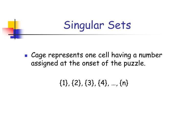 Singular Sets