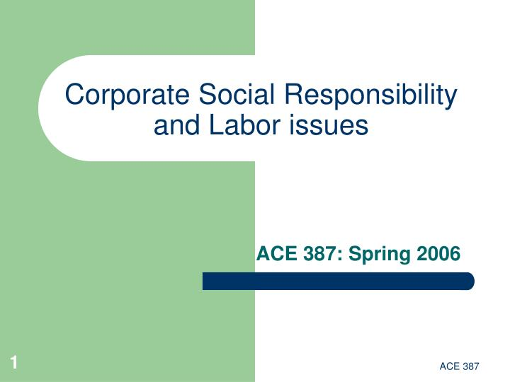 Corporate social responsibility and labor issues l.jpg
