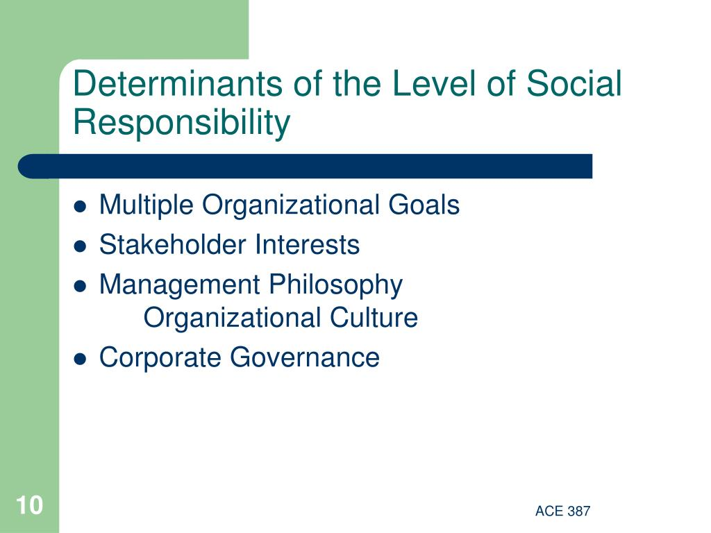 Determinants of the Level of Social Responsibility