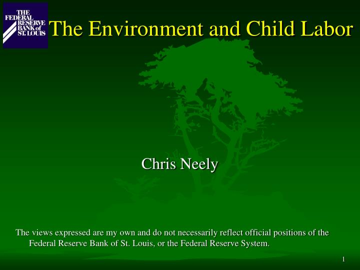 The environment and child labor l.jpg