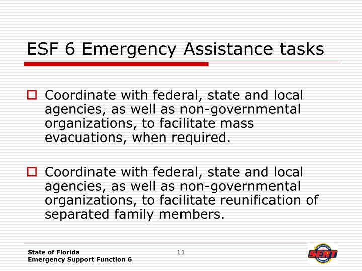 ESF 6 Emergency Assistance tasks