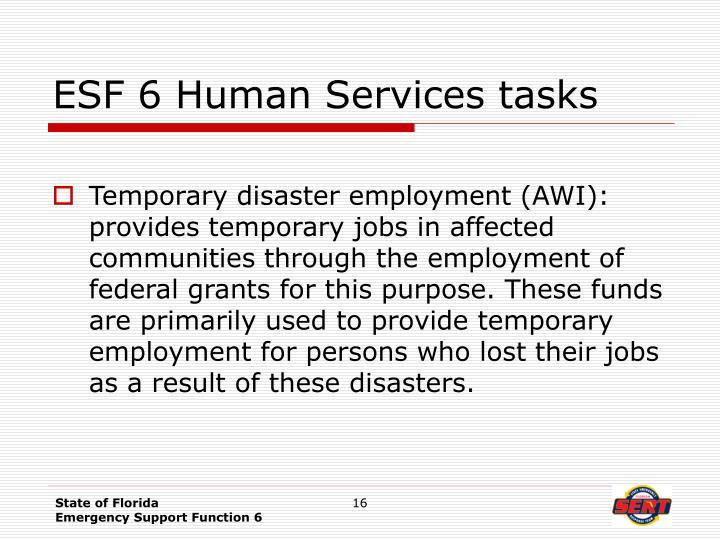 ESF 6 Human Services tasks