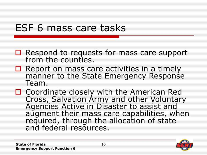 ESF 6 mass care tasks