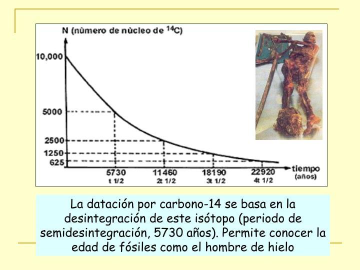 La datación por carbono-14 se basa en la desintegración de este isótopo (periodo de semidesintegración, 5730 años). Permite conocer la edad de fósiles como el hombre de hielo