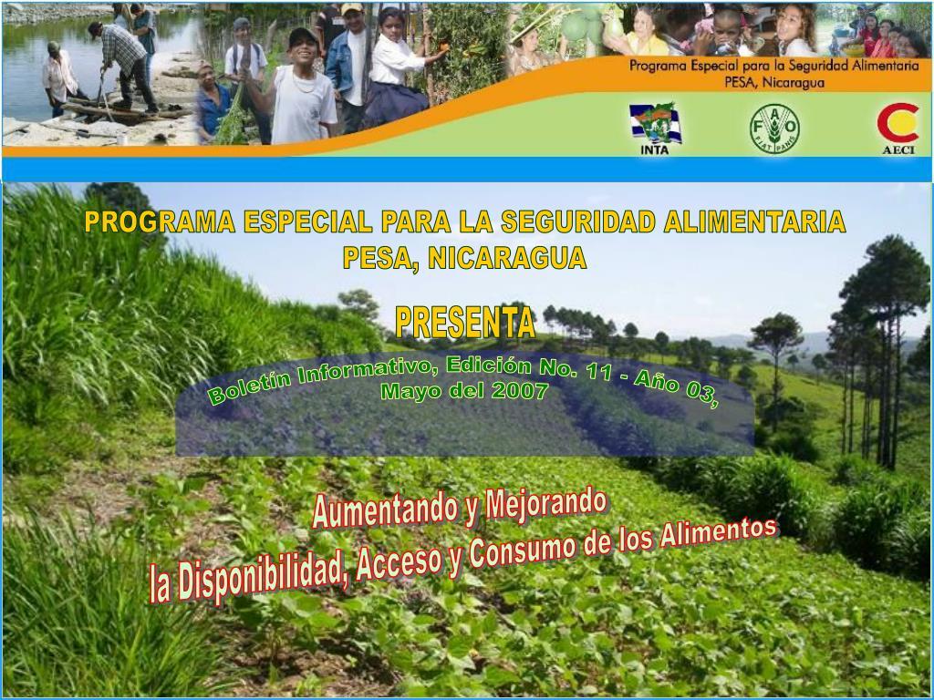 Boletín Informativo, Edición No. 11 - Año 03,