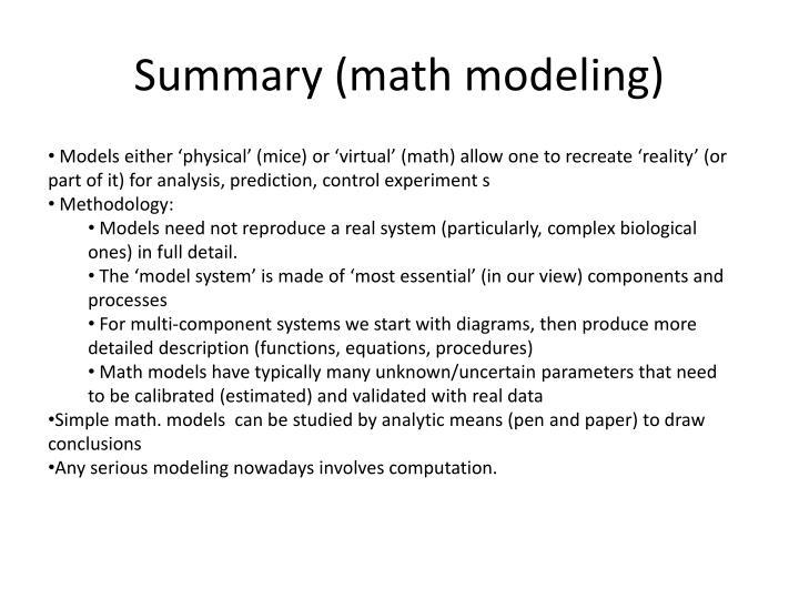Summary (math modeling)