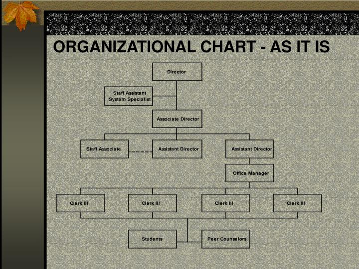 ORGANIZATIONAL CHART - AS IT IS