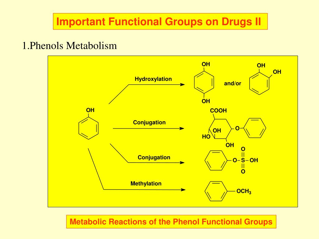 Important Functional Groups on Drugs II