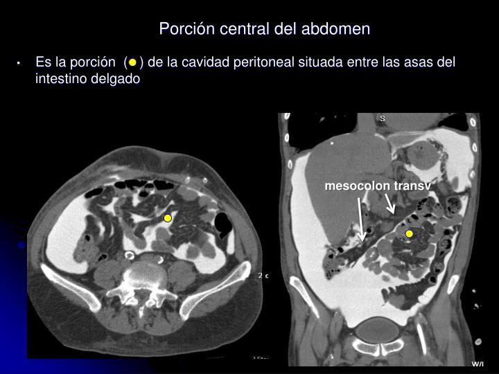 Es la porción  (   ) de la cavidad peritoneal situada entre las asas del intestino delgado