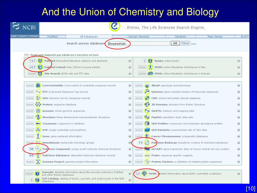 And the Union of Chemistry and Biology