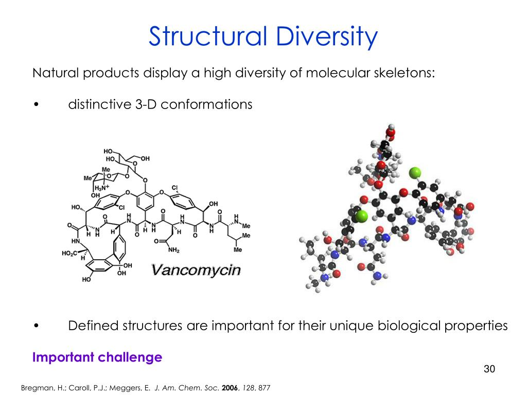 Structural Diversity
