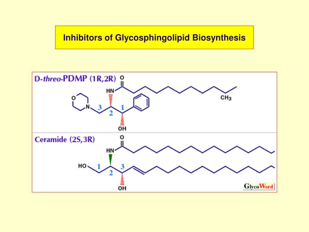 Inhibitors of Glycosphingolipid Biosynthesis