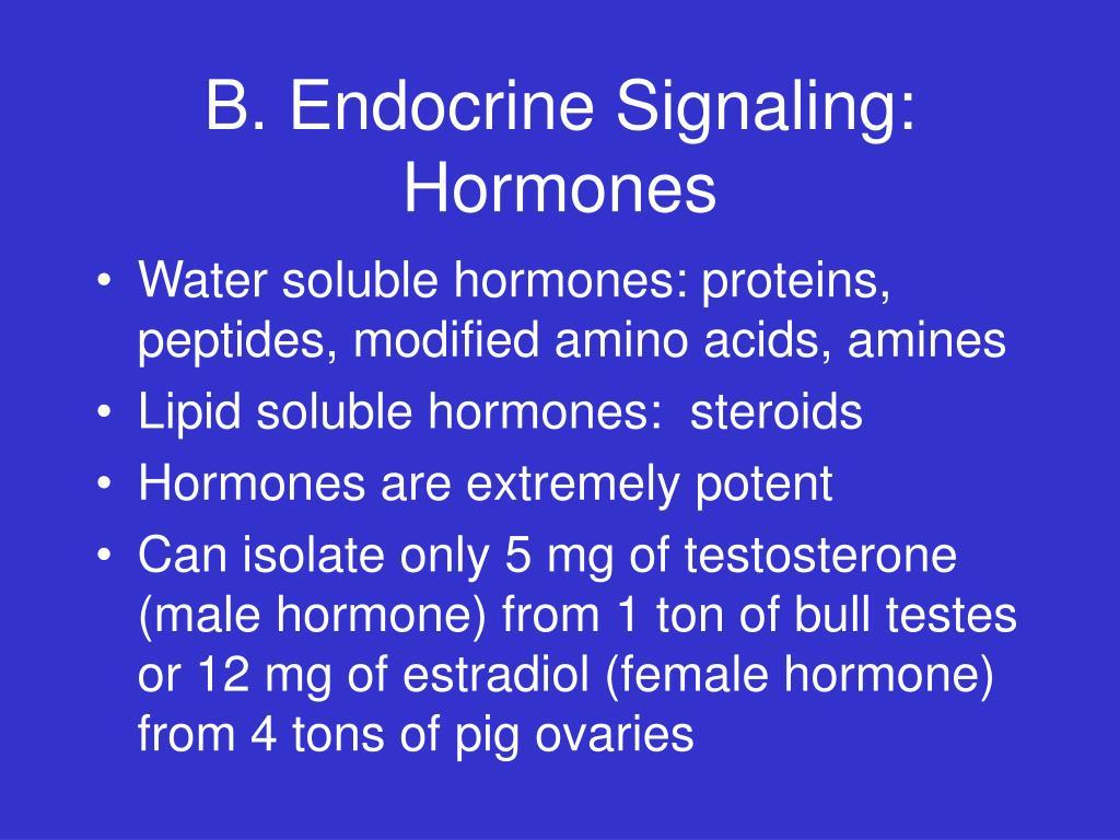 B. Endocrine Signaling: Hormones