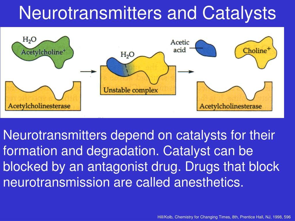 Neurotransmitters and Catalysts