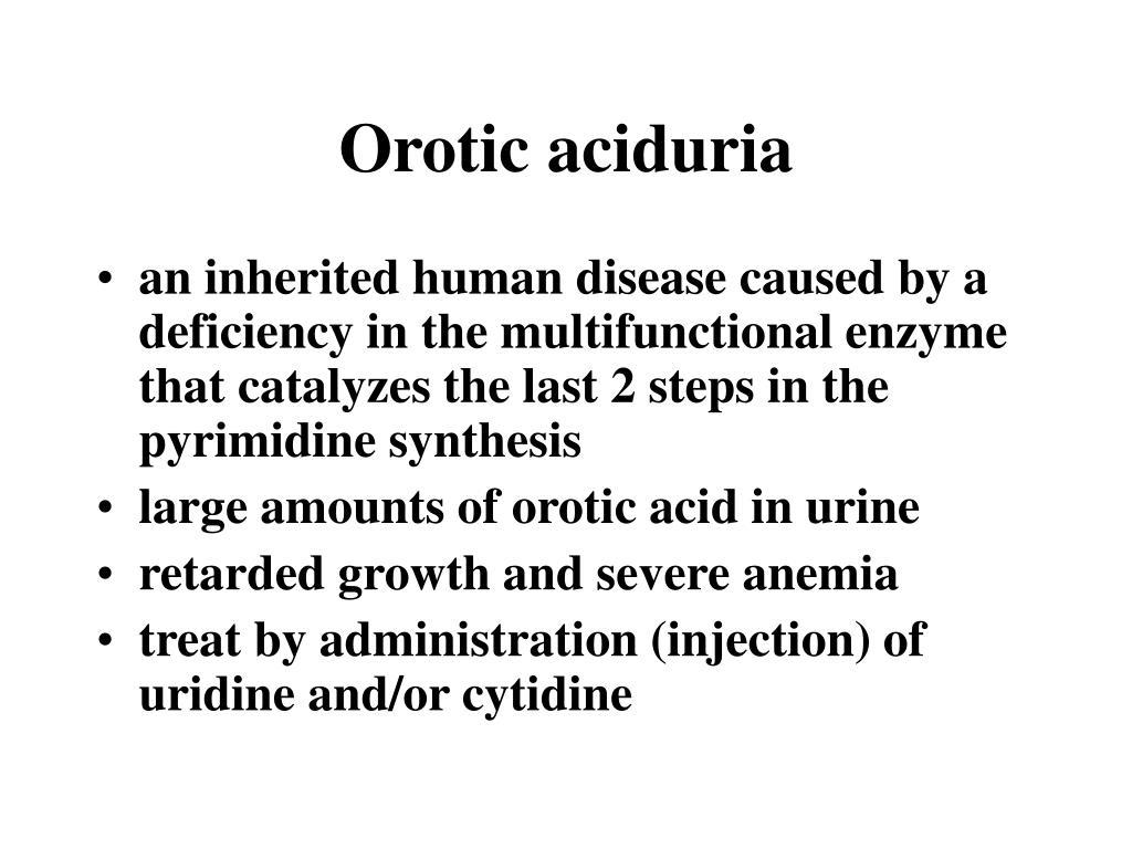 Orotic aciduria