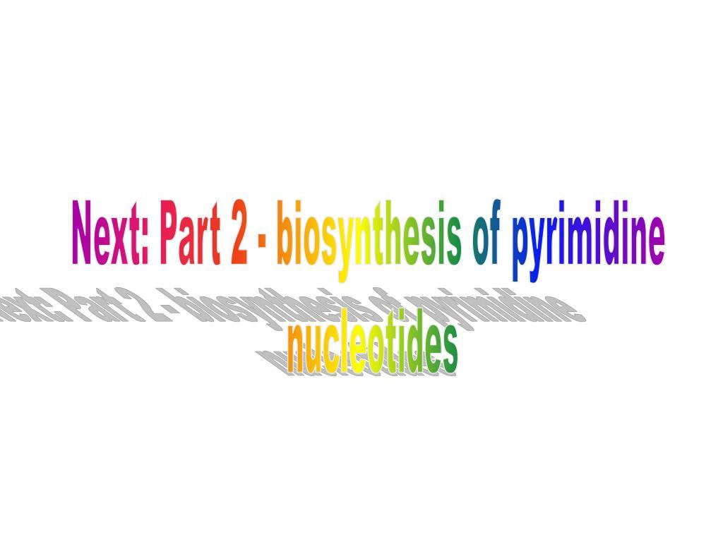 Next: Part 2 - biosynthesis of pyrimidine