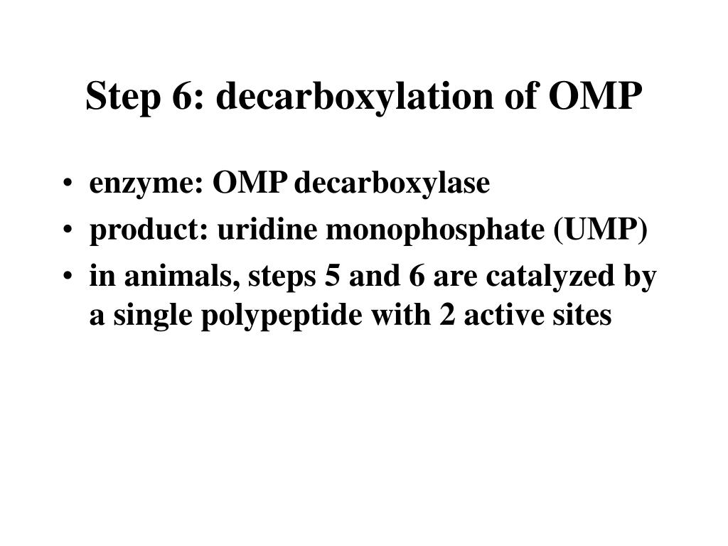 Step 6: decarboxylation of OMP