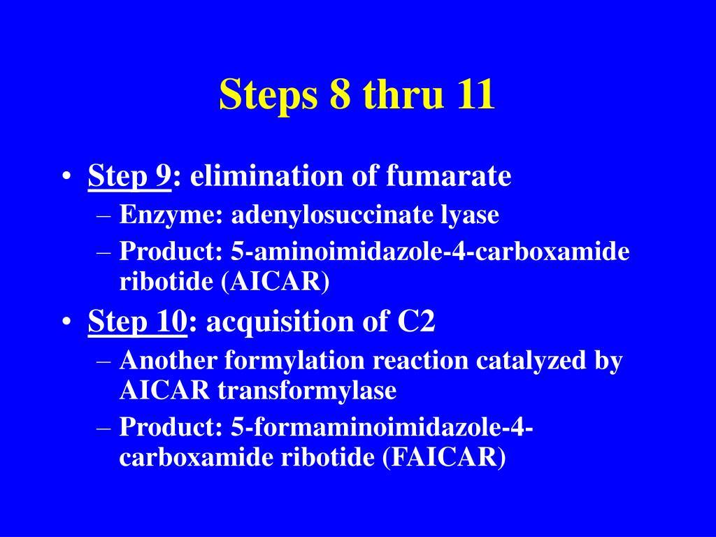 Steps 8 thru 11