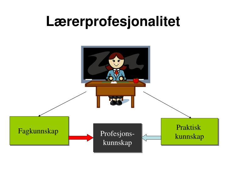 Lærerprofesjonalitet