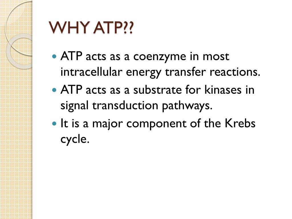 WHY ATP??