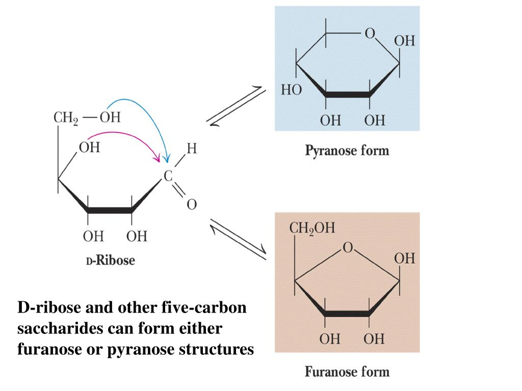 D-ribose and other five-carbon