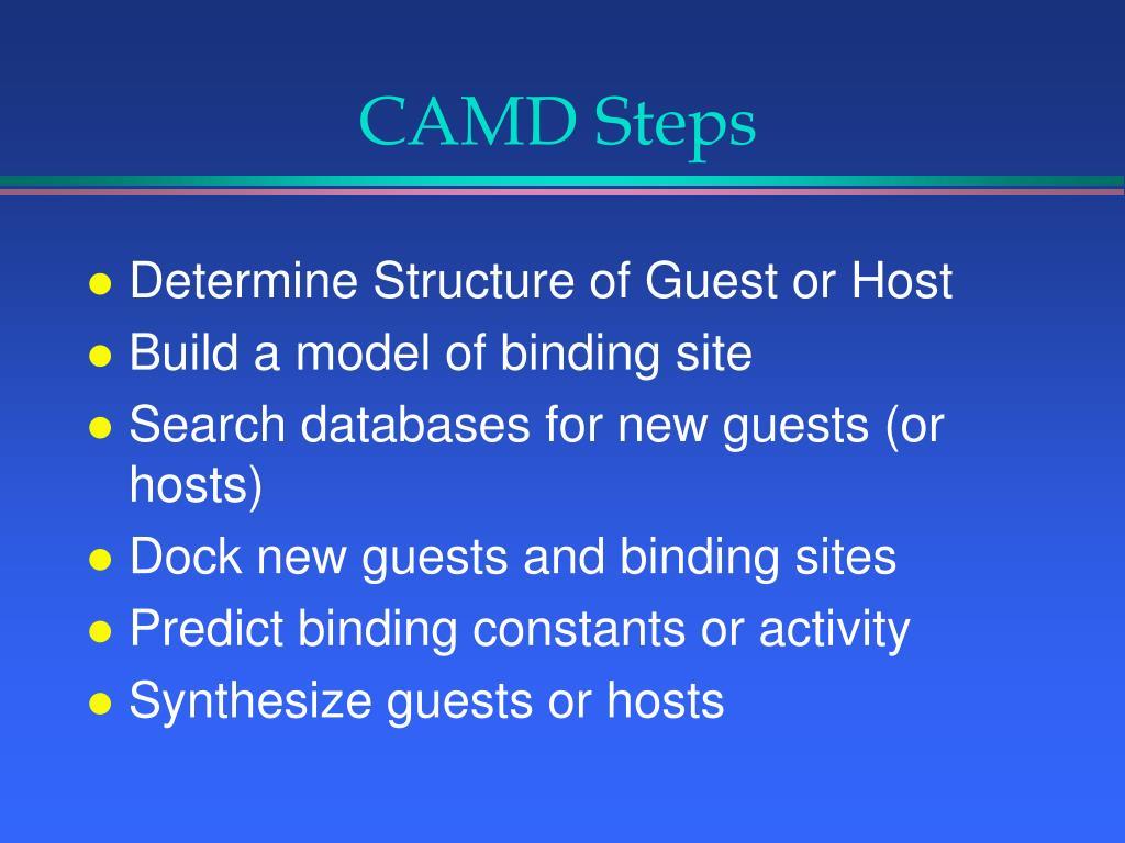 CAMD Steps