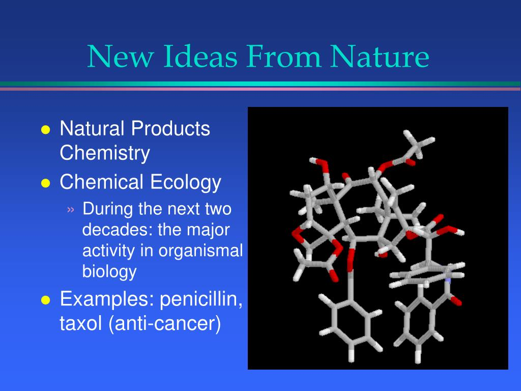 New Ideas From Nature