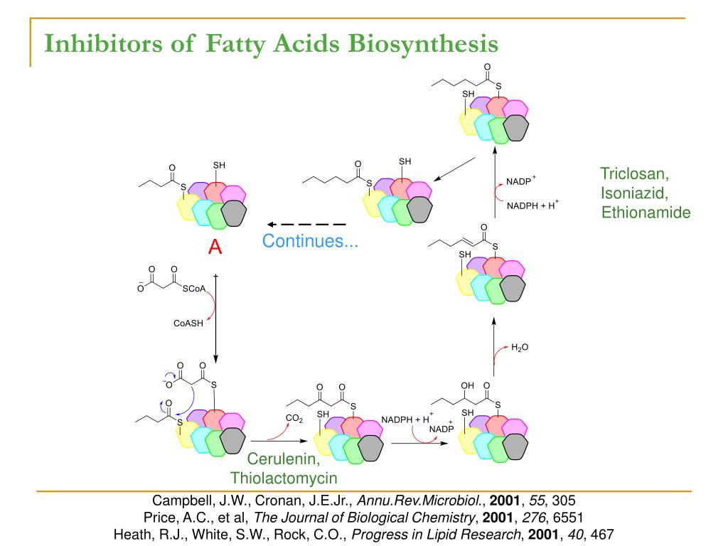 Inhibitors of Fatty Acids Biosynthesis