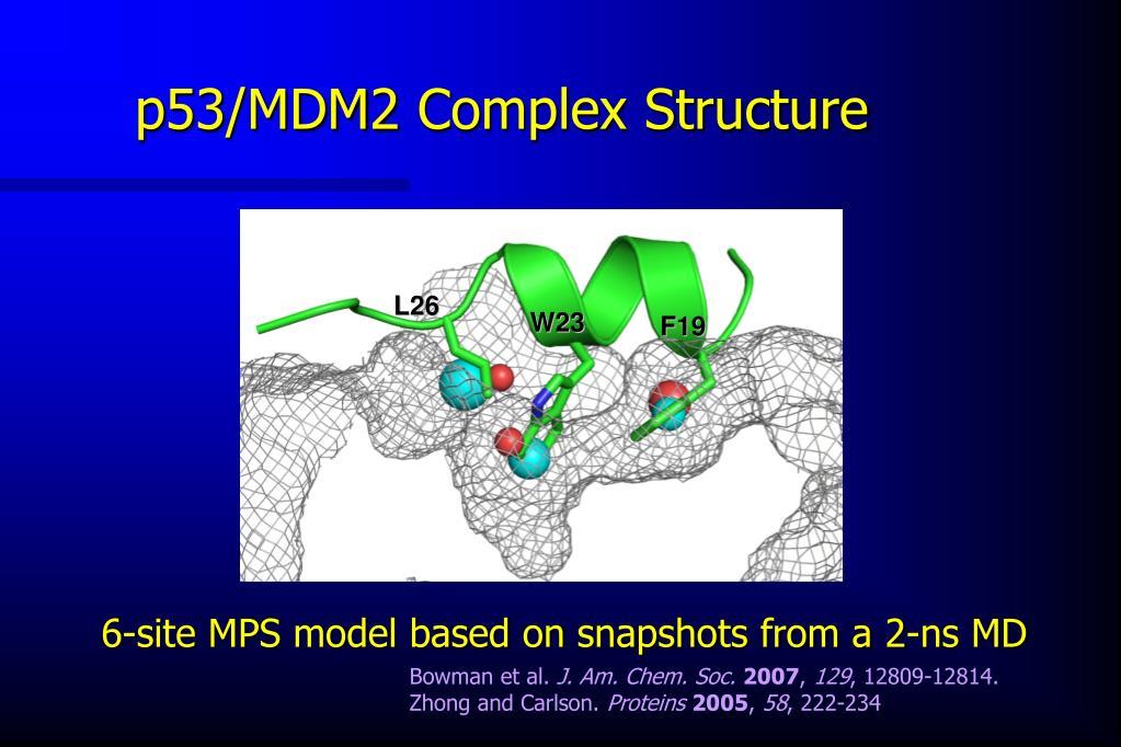 p53/MDM2 Complex Structure