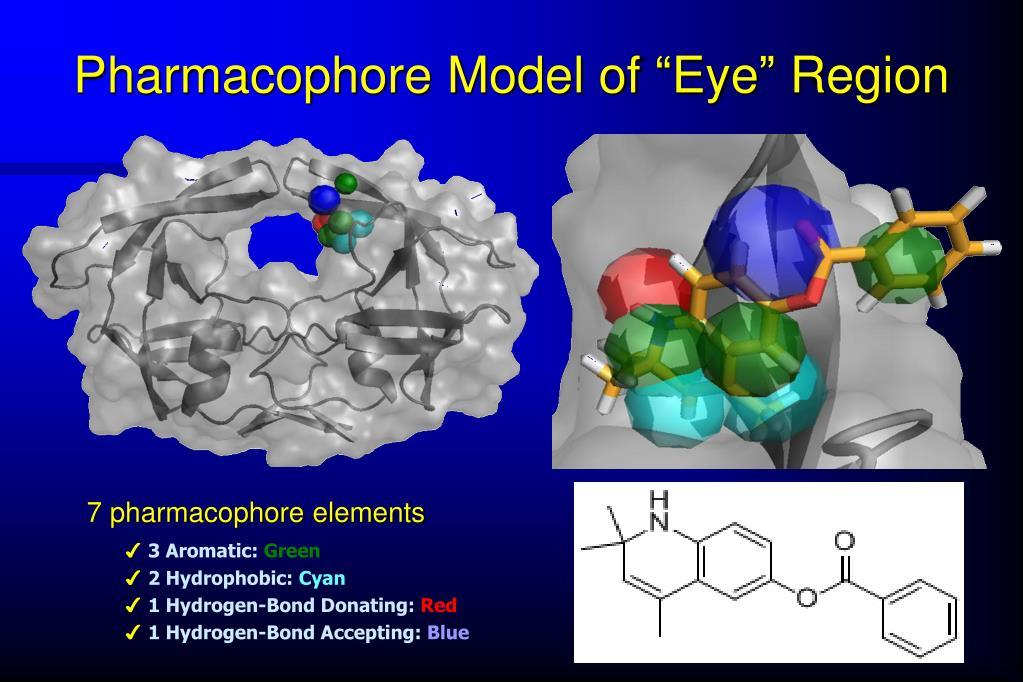 """Pharmacophore Model of """"Eye"""" Region"""